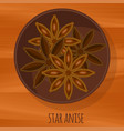 star anise flat design icon vector image