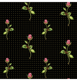 rose pattern on black with dots vector image