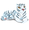 striped white Bengal tiger in cartoon style vector image