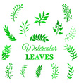 set of watercolour leaves vector image