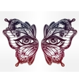 Beautiful butterfly wings mask with eyes vector image