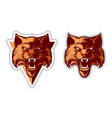 wildcat head logo vector image