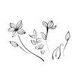 A view of flower vector image vector image