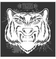 Tigers head in vintage style vector image