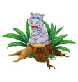 A hippopotamus sitting above the wood vector image vector image