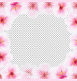 cherry flower frame with transparent background vector image
