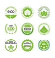 Ecological leaves labels icons set vector image
