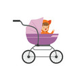 sweet little kid sitting in a purple baby pram vector image