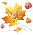 Sale tags leaves shape EPS 10 vector image vector image