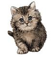 cat 09 vector image