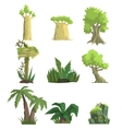 Tropical Forest Landscape Elements vector image