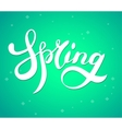 Word spring brush lettering poster vector image