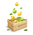 Apple fruits falling into the vector image vector image