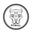 Pit bull terrier label Dod face vector image
