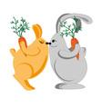 rabbits kiss vector image