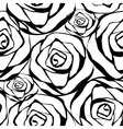 white roses pattern vector image