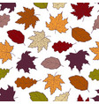 leaves seamless fall 2 vector image