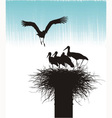 Family of storks in nest vector image