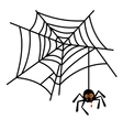 Halloween cute spider on web vector image