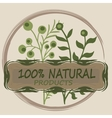 Oranic or natural logo for products vector image
