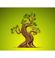 Bonsai Tree Background vector image vector image