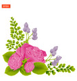 corner composition pink rose flowers with leaves vector image
