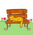 cat sleeping on the chair vector image