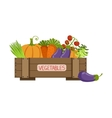 Full Crate Of Fresh Vegetables vector image
