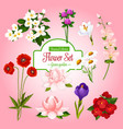 poster of spring garden flowers set vector image