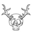 skull with deer horns vector image