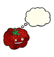 cartoon happy tomato with thought bubble vector image