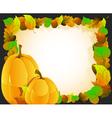 Pumpkins on autumn leaves background vector image