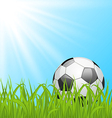 Soccer ball on green grass vector image vector image