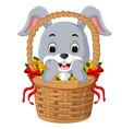 little cartoon rabbit sitting in a bucket vector image