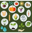 Agronomic icons flat style - vector image