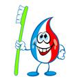 Toothpaste drop dental brush vector image vector image