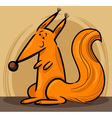 Cartoon of red squirrel vector image