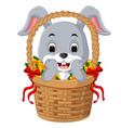 little cartoon rabbit sitting in a bucket vector image
