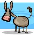cartoon of cute donkey vector image vector image