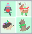 animal collection of posters vector image
