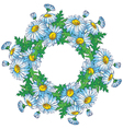 Bouquet of Daisies vector image