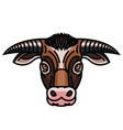 head of powerful horned bull vector image