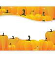 Pumpkins pile vector image