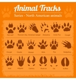 Animal Footprints - North American animals vector image vector image