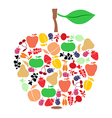 apple on fruits vector image