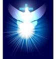 Holly spirit vector image