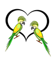 A couple of macaw parrots with a heart vector image