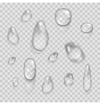 Transparent water drops set isolated on vector image vector image
