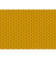 Honeycomb Texture vector image vector image