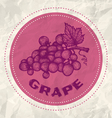grape vintage paper vector image